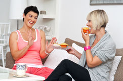 Two mature woman friends chating over coffee. Two woman friends chating over coffee and muffins at home stock photos