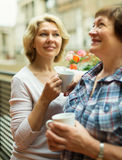 Two mature women drinking coffee Stock Images