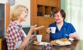 Two mature women  drinking tea Stock Photo