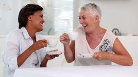 Two mature women gossiping during afternoon tea. In the dinning room stock video