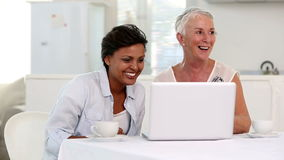 Two mature women looking at laptop stock footage