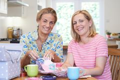 Portrait Of Two Mature Women Sewing Quilt Together. Two Mature Women Sewing Quilt Together Royalty Free Stock Image