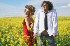 Two on meadow Stock Photography