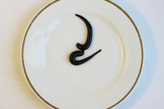 Two medical leeches Hirudo medicinalis on a white plate. Royalty Free Stock Image
