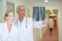 Two medics looking at xray. Doctor royalty free stock photos