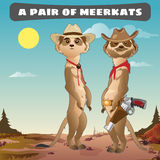 Two meerkat cowboy in the wild West Stock Photo