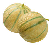 Two melons  Cantaloup , isolated on white Stock Images