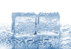 Two melted ice cubes Stock Photography