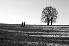 Two men. Two walking men and two trees royalty free stock photos