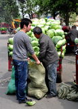 Pengzhou, China: Men Bagging Cabbages Royalty Free Stock Photos