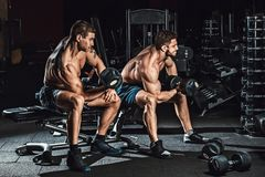 Two men bodybuilders execute exercise with dumbbells for biceps sitting in dark gym looking in the mirror. Opposite stock images