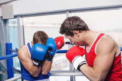 Two men boxing. Royalty Free Stock Image