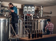Two men brewing beer in the craft microbrewery. Two stylish bearded men brewing beer in the craft microbrewery stock photo