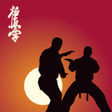 Two men are engaged in karate Royalty Free Stock Images