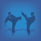 Two men are engaged in karate Royalty Free Stock Image