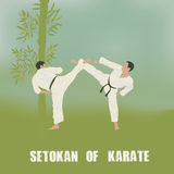 Two men are engaged in karate. Royalty Free Stock Photography