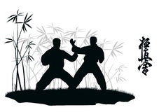Two men are engaged karate. Royalty Free Stock Photos