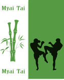 two men are engaged in Myai Tai Royalty Free Stock Image