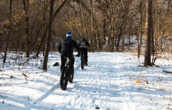 Two men on fat-bikes ride in winter forest Stock Photos