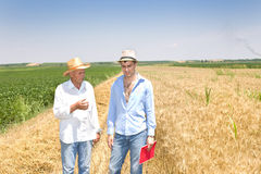 Two men in the field. Two men with straw hats walking on barley field in summer time Stock Photography