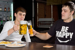 Two men friends drinking beer in a pub. Two men friends drinking beer together in a pub sitting at the counter raising their tankards in a toast Stock Photos