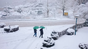 Two men go outdoor , Japan. Two men go outdoor they have green umbrella it's so cute. They go through many snow and feel cold Royalty Free Stock Image