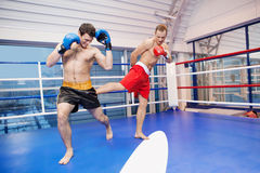 Two men kickboxing. Royalty Free Stock Image