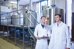 Two men in lab coat looking at the beaker with beer Stock Photography