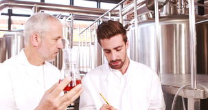 Two men in lab coat looking at the beaker with beer stock video