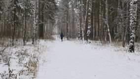 Two men marathoners. Running winter marathon in a snowy woods stock video footage