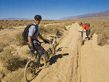 Two men mountain biking. Stock Images