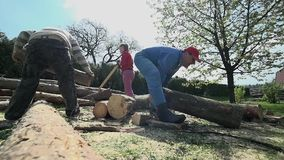 Two men moving big logs in slow motion. Low angle shot with people storing wood for cold days stock footage