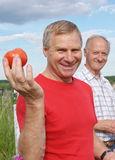 Two men on nature in summer Royalty Free Stock Images