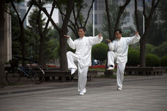 Two men Playing Taijiquan. Taijiquan is popular among citizens and people practice Taiji for health improvement. Jinzhou, northeast China Royalty Free Stock Images