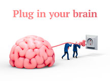 Two men plugging giant brain with electric socket. 3D illustration. Two men plugging giant brain with electric socket. Business and education concept Royalty Free Stock Photos