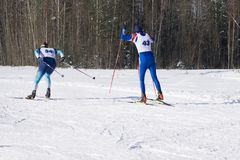 Two men skier in a blue Jogging suit rides with skiing in the winter forest. royalty free stock image