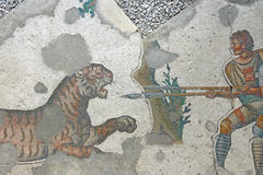 Two men with a spear fighting a tiger stock photo