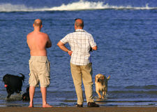 Two Men And Their Dogs. Two men standing together on the beach with their dogs Royalty Free Stock Photos