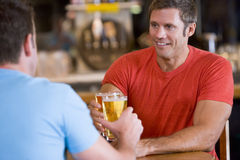 Two men toasting beer in a bar. Two men sitting down toasting  beer in a bar Royalty Free Stock Photos
