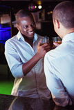 Two men toasting with glass of whiskey Royalty Free Stock Images