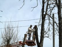 Two men trimming tall trees with a chainsaw from an aerial device. Rejuvenation of old trees among electricity lines in cities,. Background with copy space royalty free stock photo