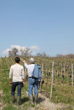 Two men in vineyard Royalty Free Stock Photography
