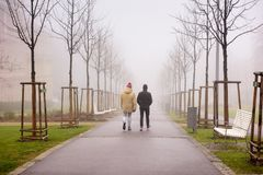 Foggy alley in the city park of Znojmo on a winter day. Znojmo, Czech Republic, Europe. Two men walkin along a foggy alley in the city park of Znojmo on a winter Stock Image