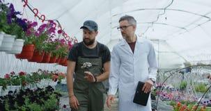 Two men walking in greenhouse. Medium shot of two men walking in greenhouse among plants stock video footage