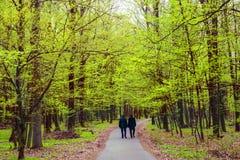 Two men walking in park. Two men walking in the green park Stock Photo