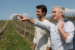 Two men on wine tour Royalty Free Stock Photos