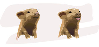Two merry piglets. Two merry happy piglets on a grey background Royalty Free Stock Photos