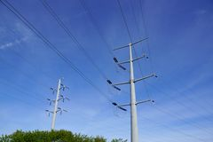 Two Metal Power line Poles above the trees Stock Photos