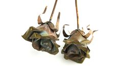 Two metal rose decorations Royalty Free Stock Photo