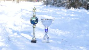Two metal soccer cups. Two metal football cups stand in a snow-covered forest stock video
